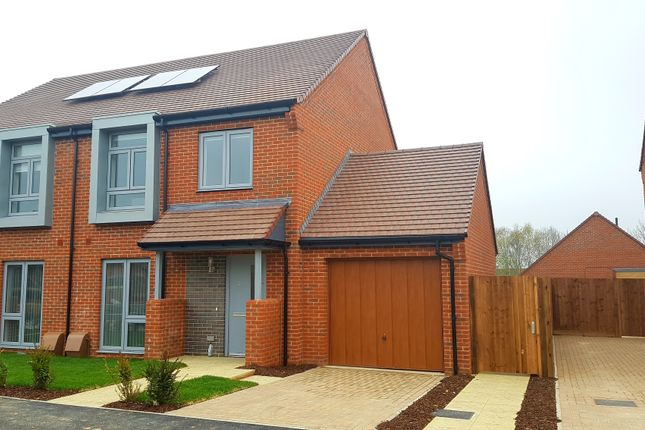 Thumbnail Semi-detached house to rent in Hazel Close, Southampton