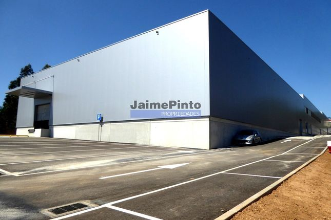 Thumbnail Warehouse for sale in Warehouse 5800 Sq. Mt., Modern Industrial Premises., Avintes, Vila Nova De Gaia, Porto, Norte, Portugal