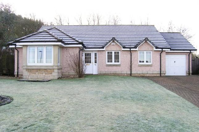 Thumbnail Detached bungalow for sale in 45 Paterson Gardens, Hawick