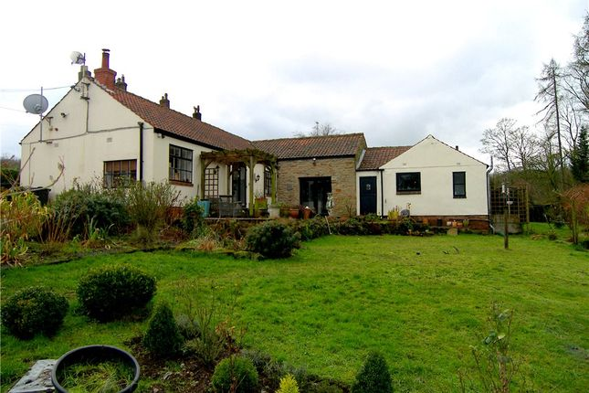 Thumbnail Bungalow for sale in Crofters Barn, Crofters Barn, Knowts Hall Farm