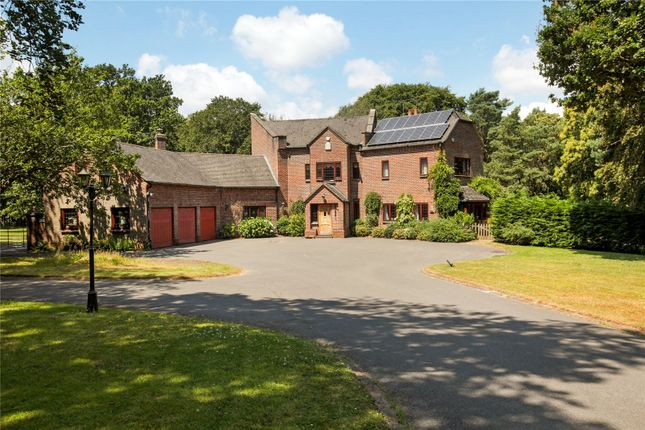 Thumbnail Detached house for sale in Rushall Lane, Corfe Mullen, Wimborne, Dorset