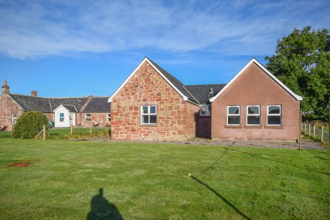 3 bed bungalow to rent in Careston, Brechin, Angus DD9
