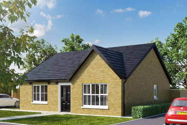 Thumbnail Detached bungalow for sale in Site 20 Towerview Meadow, Cloughey