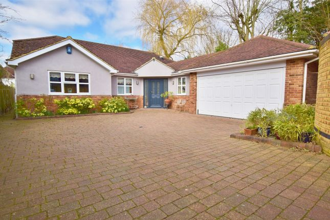 3 bed detached bungalow for sale in Tye Common Road, Billericay