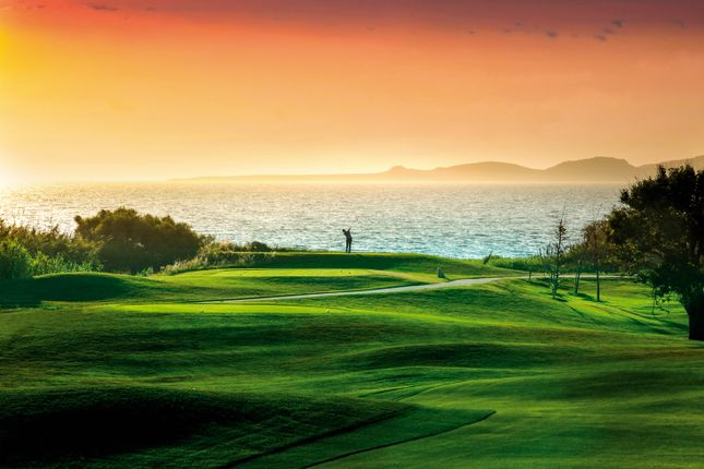 The Dunes Course At Sunset In Costa Navarino