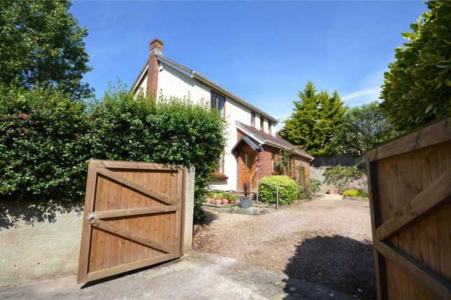 Thumbnail Detached house for sale in Headway Cross Road, Teignmouth, Devon