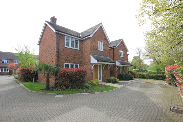 Thumbnail Detached house to rent in The Grove, Shephall Green, Stevenage, Hertfordshire