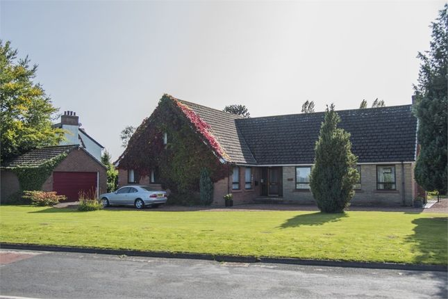 Thumbnail Detached house for sale in Edenglass, Scotby, Carlisle, Cumbria
