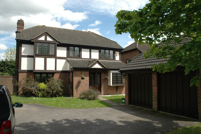 Thumbnail Detached house to rent in Atalanta Close, Purley
