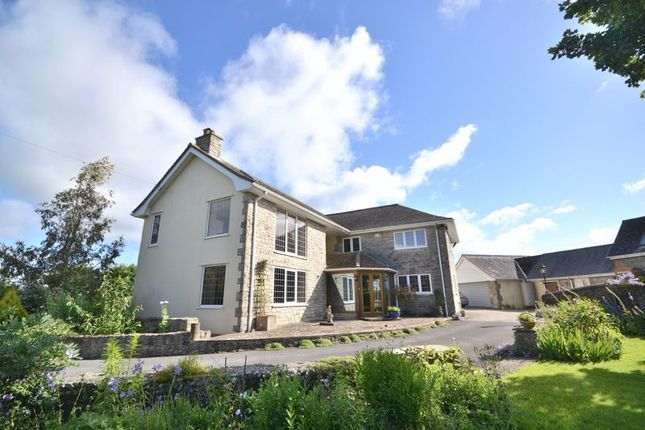 Thumbnail Detached house for sale in Cann, Shaftesbury
