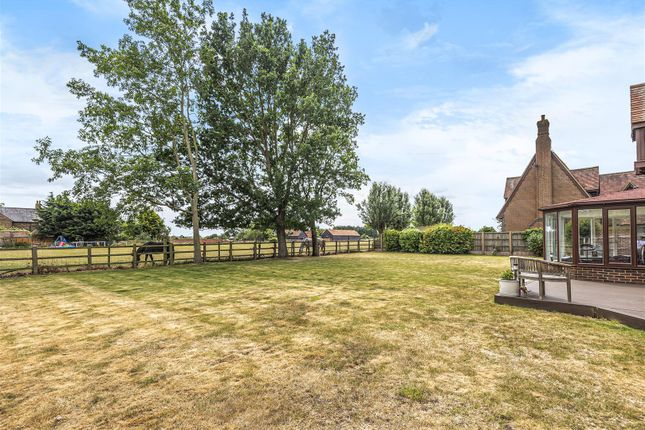 Thumbnail Detached house for sale in Holm Oak Green, Cardington, Bedfordshire