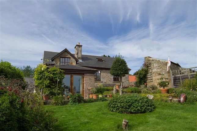 Thumbnail Detached house for sale in Church Hill, Chatton, Northumberland