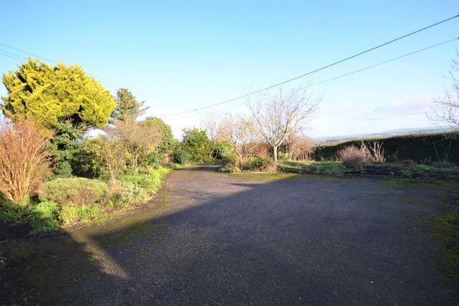 Drive of Wood Lane, Stalbridge, Sturminster Newton DT10