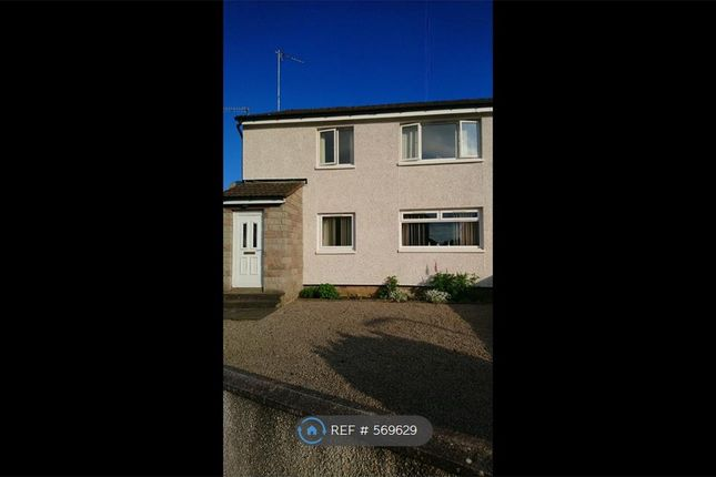 Thumbnail Flat to rent in Swan Road, Ellon