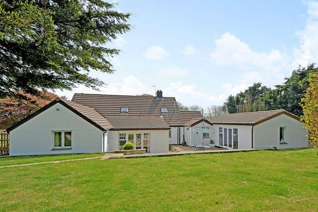Thumbnail Detached house for sale in The Beeches, Tredinnick, Outskirts Mitchell