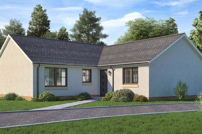Thumbnail Detached bungalow for sale in The Parkgrove, Maple Grove, James Street, Blairgowrie, Perth And Kinross