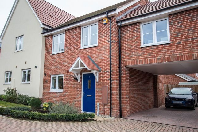 3 bed semi-detached house to rent in Howland Close, Saffron Walden