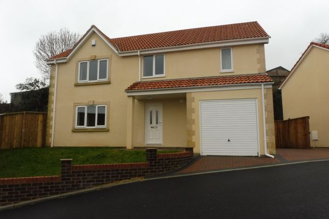 Thumbnail Property to rent in Grove Road, Milton, Weston-Super-Mare