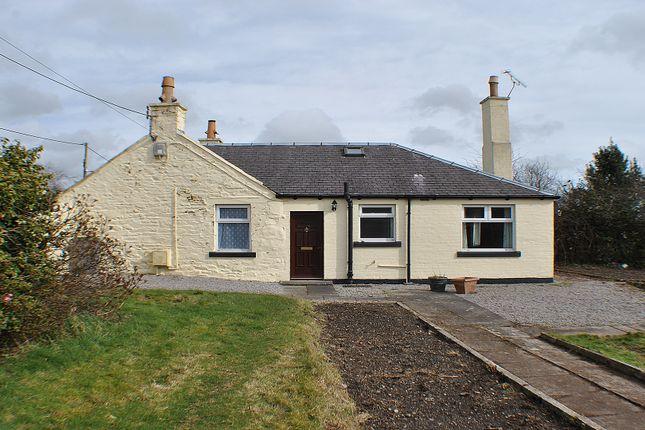 Thumbnail Cottage for sale in Briars, Bridge Of Dee, Castle Douglas