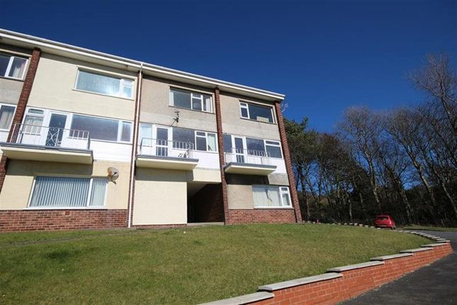 Thumbnail Flat to rent in Danycoed, Aberystwyth