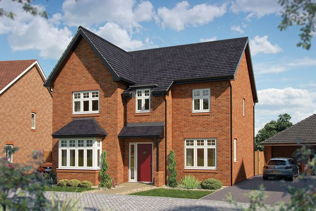 "Thumbnail Detached house for sale in ""The Birch"" at Salford Road, Bidford-On-Avon, Alcester"