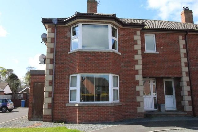 Thumbnail Flat to rent in A The Meadows, Donaghadee