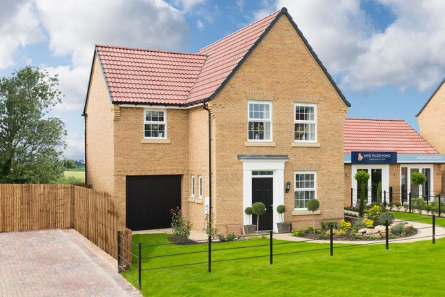"Thumbnail Detached house for sale in ""Bradwell"" at Hanzard Drive, Wynyard Business Park, Wynyard, Billingham"