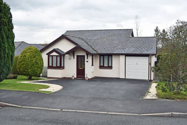 Thumbnail Detached bungalow to rent in ., Llandrindod Wells