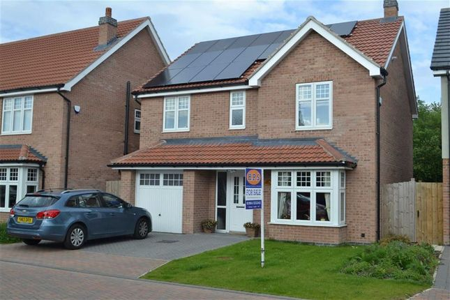Thumbnail Detached house for sale in Rawson Way, Hornsea, East Yorkshire