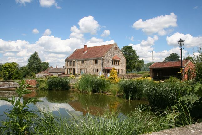 Thumbnail Property to rent in Adber, Sherborne