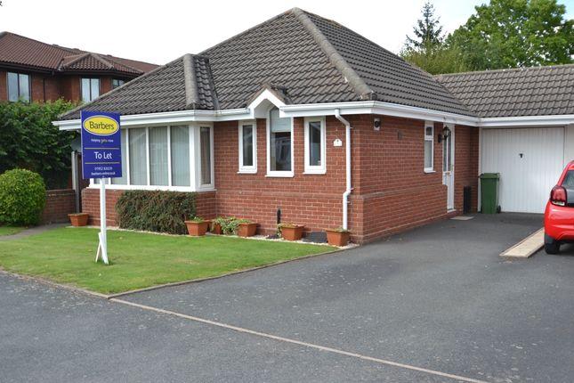Thumbnail Detached bungalow to rent in Granville Road, Newport