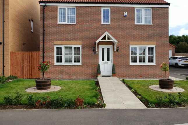 Thumbnail Detached house for sale in Buckthorn Grove, Middlesbrough