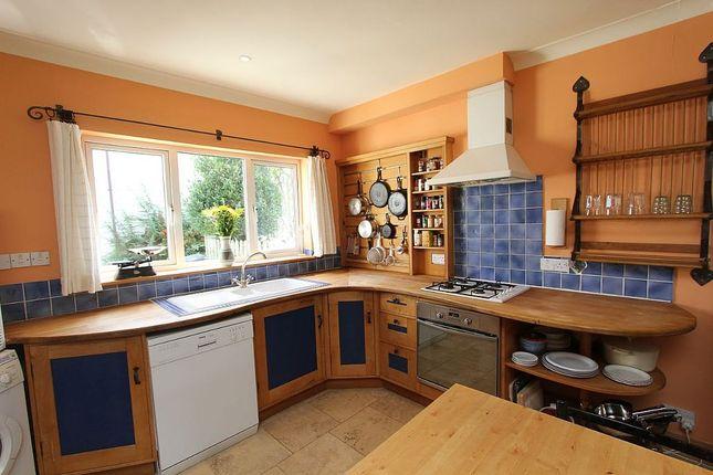 Thumbnail Semi-detached house for sale in Birchwood Close, Totnes, Devon