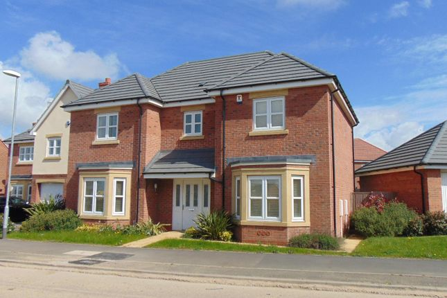 Thumbnail Detached house to rent in Devana Way, Great Glen, Leicester