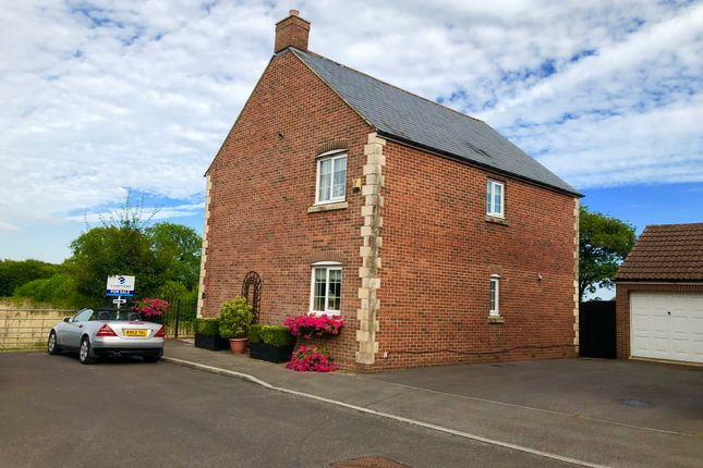Thumbnail Detached house for sale in Great Ground, Shaftesbury