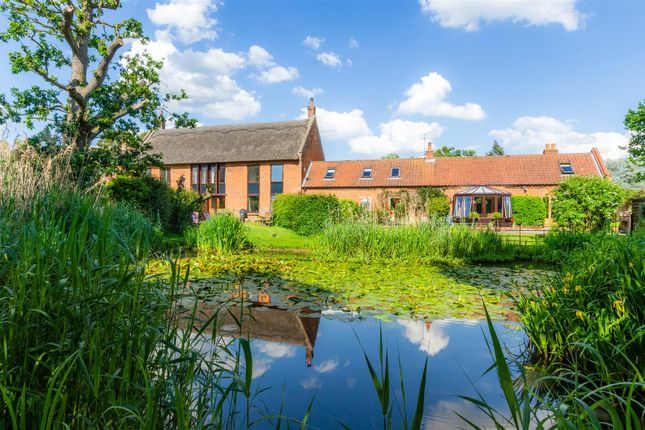 Thumbnail Barn conversion for sale in Field Lane, Blofield, Norwich