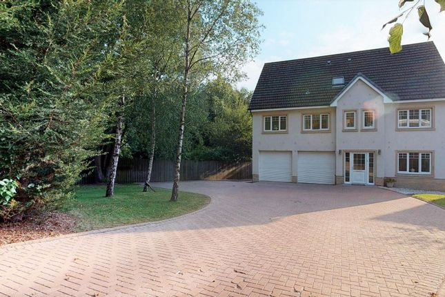 Thumbnail Detached house for sale in Jerviston Road, Motherwell