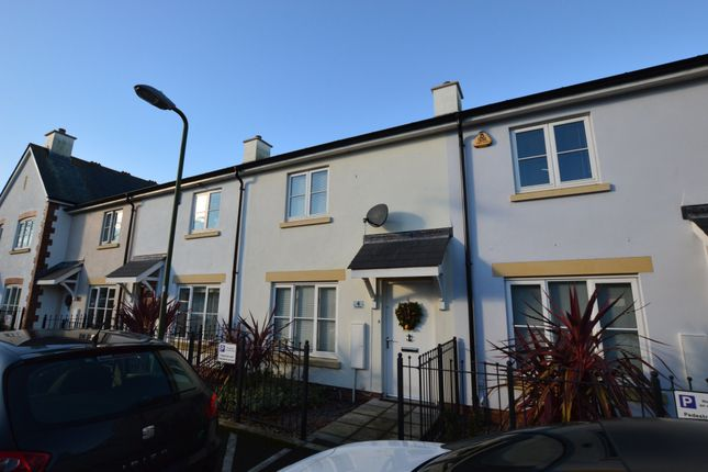 Thumbnail Terraced house for sale in Lime Avenue, Torquay