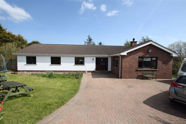 Thumbnail Detached bungalow for sale in Drumgavlin Road, Ballynahinch, Down
