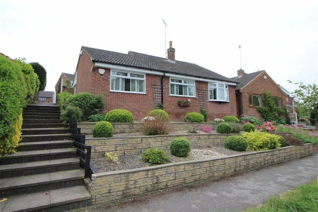 Thumbnail Detached bungalow for sale in Pippin Hill, Denby Village, Derbyshire