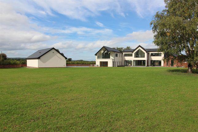 Thumbnail Property for sale in Grove House, Llyndir Lane, Rossett