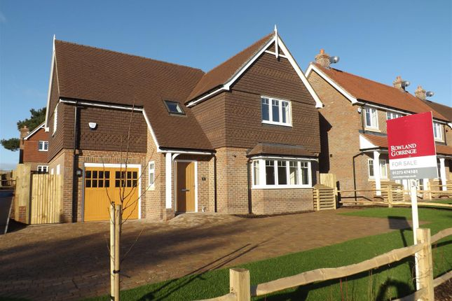 Thumbnail Detached house for sale in Cornford Crescent, Berwick, Nr. Lewes