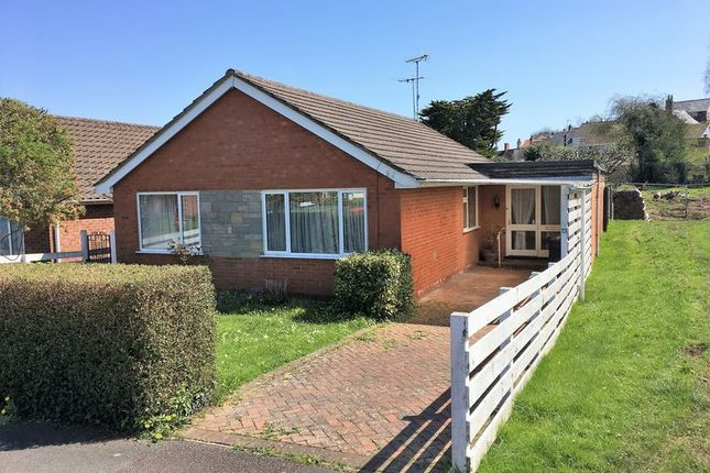 Thumbnail Detached bungalow for sale in Spring Gardens, Wiveliscombe, Taunton
