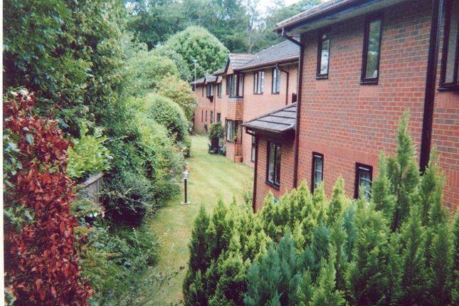 Thumbnail Property for sale in Sherwood Close, Southampton