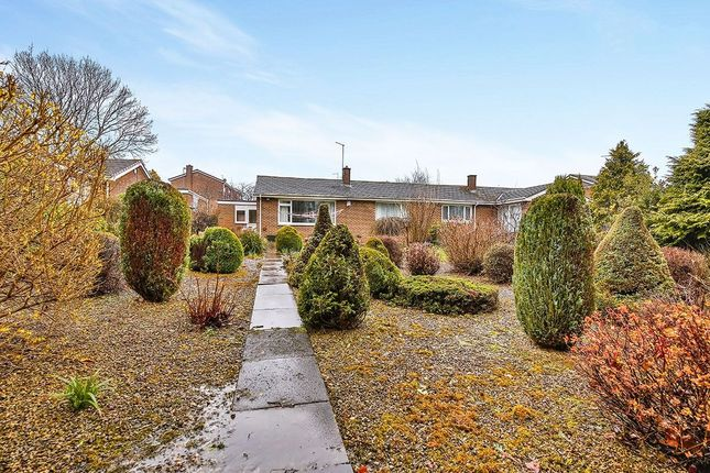 Thumbnail Bungalow for sale in Woodlands, Seaham
