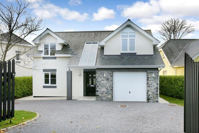 Thumbnail Detached house for sale in Higher Warborough Road, Galmpton, Nr. Brixham, Devon