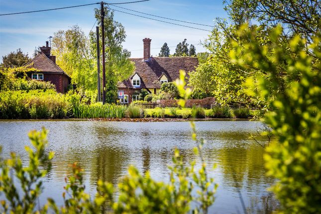 Thumbnail Property for sale in The Green, Dunsfold, Godalming
