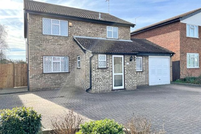 Thumbnail Detached house for sale in Green Lane, Eastwood, Leigh On Sea, Essex