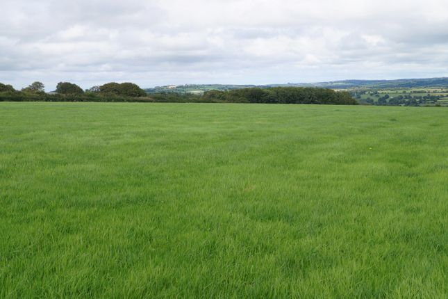 Land for sale in Newchapel, Boncath, Pembrokeshire, 0Hg SA37