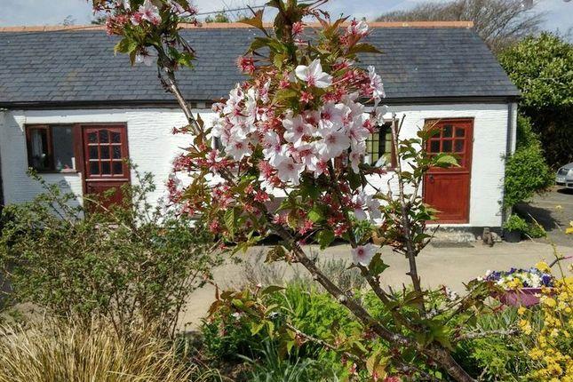 Thumbnail Cottage to rent in St. Keyne, Liskeard